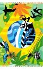Multipurpose Shawl - flag style, Rio de Janeiro motifs
